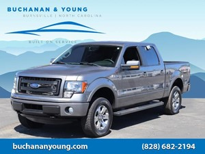 Picture of a 2014 Ford F-150 FX4