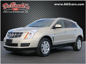 Picture of a 2010 Cadillac SRX Luxury Collection
